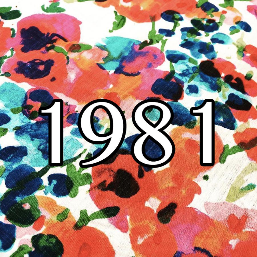 Fluxblog » Blog Archive » 1981 Survey Mix